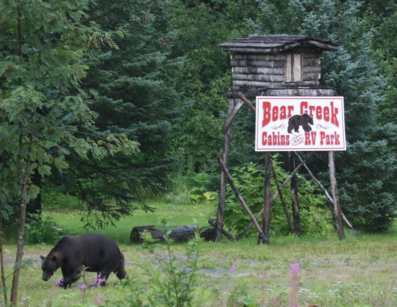 Bear Creek Cabins and RV Park in Valdez Alaska