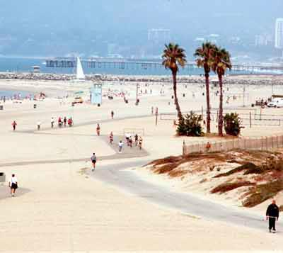 Compare Lax Car Rental Rates Save Time And Money