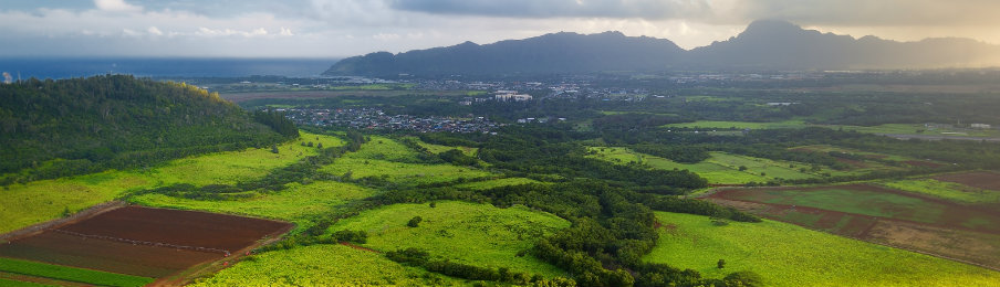 aerial view of kauai island near lihue town
