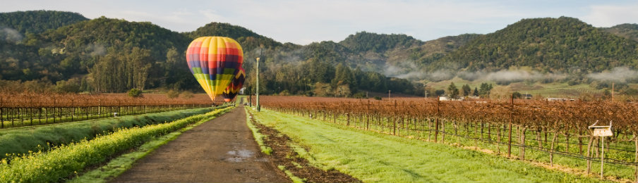 hot air balloon awaiting flight in napa valley california