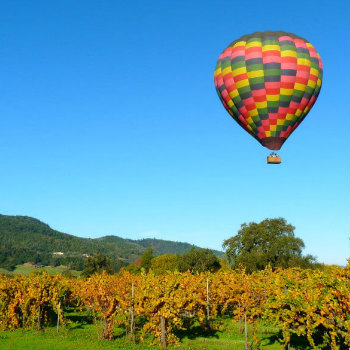 Hot air balloon floating in Napa Valley vineyards