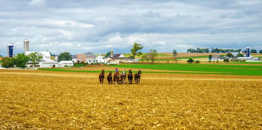 Amish culture in Pennsylvania