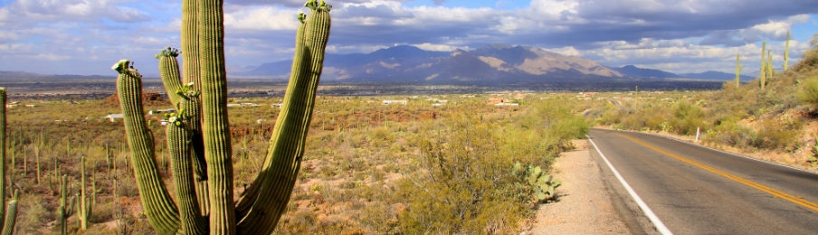 Rental Car Companies In Tucson Arizona