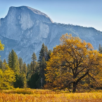 Yosemite in Fall